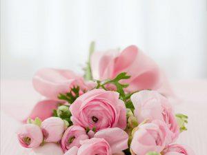 El agua de rosas se extrae de los pétalos de la rosa de damáscena. Experimenta sus beneficios con el tónico de agua de rosas de Frownies.
