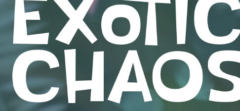 Exotic Chaos